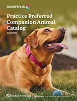 2020/2021 CA Practice Preferred