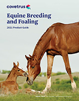 2021 EQ Breeding and Foaling