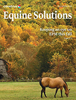 Fall/Winter Equine and Livestock Solutions