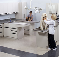 Midmark Cabinetry